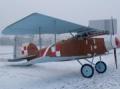 Albatros D.2