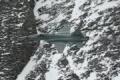 Northrop F-5 Tiger