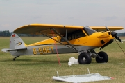 CubCrafters Carbon Cub SS