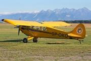 Aviat A-1A Husky