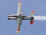 PZL Warszawa Orlik