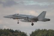 McDonnell Douglas Hornet